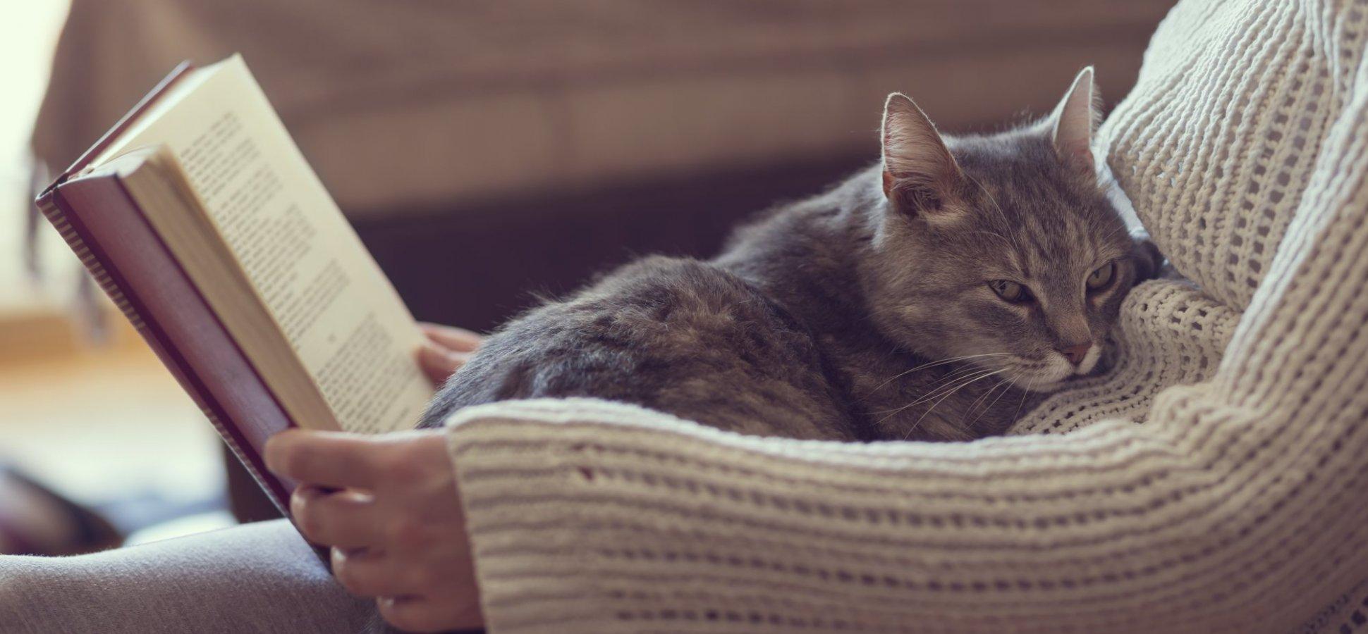 ۱۰ برتری کتاب دوستان بر دیگران